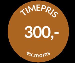 Timepris ex. moms